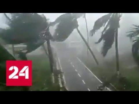Капюшон кобры супертайфун спровоцировал великий исход Россия 24