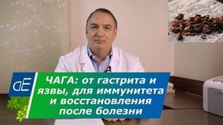 ЧАГА от ГАСТРИТА и язвы желудка, при онкологии ?, для ИММУНИТЕТА и восстановления после болезни.