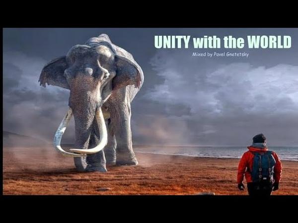 Unity with the World Progressive House Melodic Techno Mix Mixed by Pavel Gnetetsky