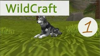 Как играть в WildCraft? Моя первая игра в WildCraft