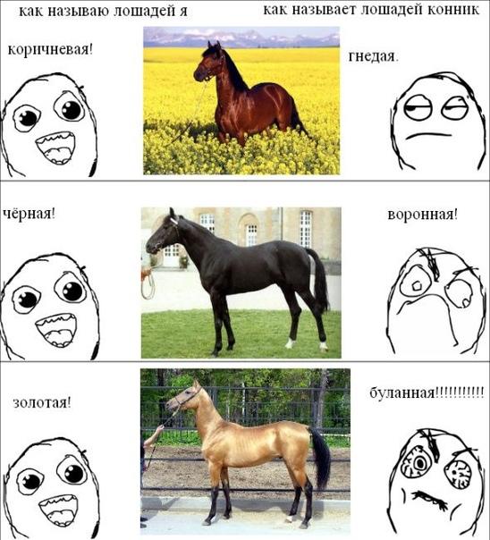 Игра в слова картинка с конями