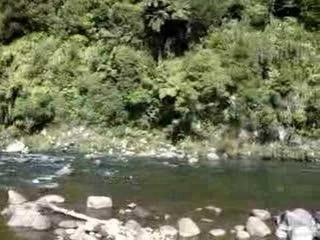 Река Мангануи (Тихий ок., Океания, Полинезия, арх. Нов. Зеландия, о-в Северный, бассейн р Вайтара, Нов. Зеландия, рег. Таранаки)