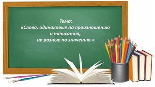 Русский язык 2 класс. «Слова одинаковые по произношению и написанию, но разные по значению»