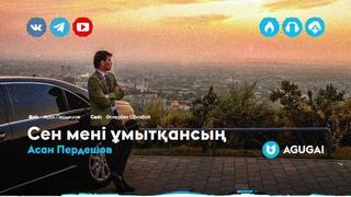 Асан Пердешов - Сен мені ұмытқансың