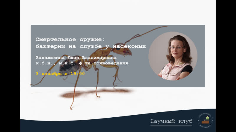 Научный клуб 03 12 Смертельное оружие бактерии на службе у насекомых