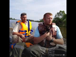 Из затопленного Тулуна спасают животных