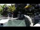 Горячие источники у подножия вулкана Батур о Бали