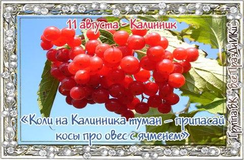 вас под народный календарь день калинника открытки ним расположены