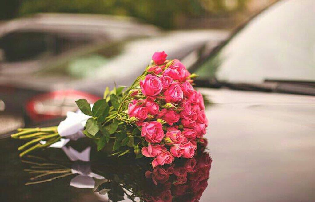 Эту белую розу принес тебе любимая картинки помнить, что