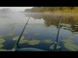 Рыбалка. Ловля карася в тихом местечке. Красота!