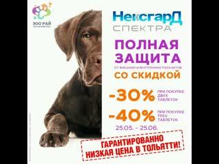 НЕКСГАРД СПЕКТРА