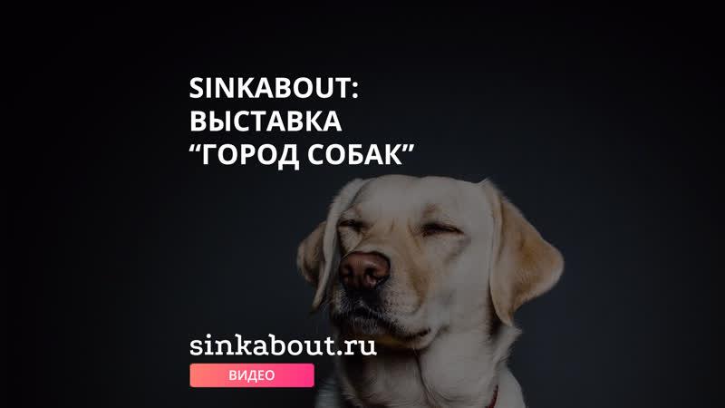 Sinkabout Выставка Город собак