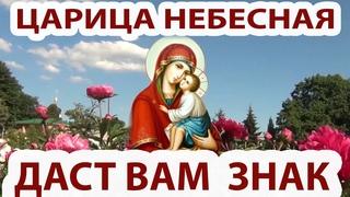 Не ленись, послушай и Царица Небесная непременно поможет тебе! Ты моя Мати Царица Небесная