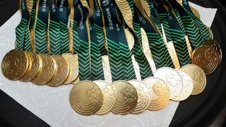 Вручение золотых медалей