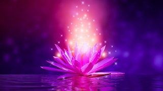 Deep Healing Miracle Tone 24/7💙 Frequency Music | Meditation Music For Self Love | Zen Music