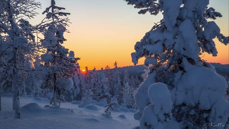 Kemijärvi Photos talvi 2019
