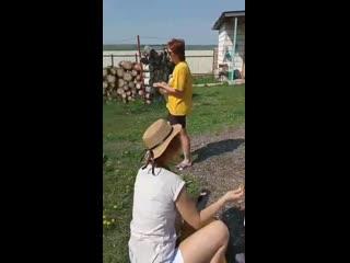 Как папа-страус заботится о птенцах