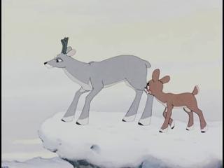 Храбрый оленёнок мультфильм