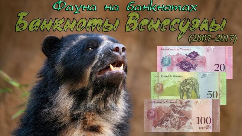 Банкноты Венесуэлы Фауна на банкнотах Коллекция банкнот