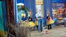 Красавины Злата и Кристина, Крестенко Женя и Алена, Лобова Полина. Жу-жу танец пчелок