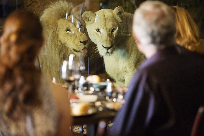 Jamala Wildlife Lodge - необычный отель в зоопарке, Австралия, изображение №6