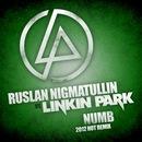 Персональный фотоальбом Руслана Нигматуллина