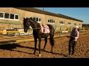 Про лошадей или О том, как мечты становятся реальностью