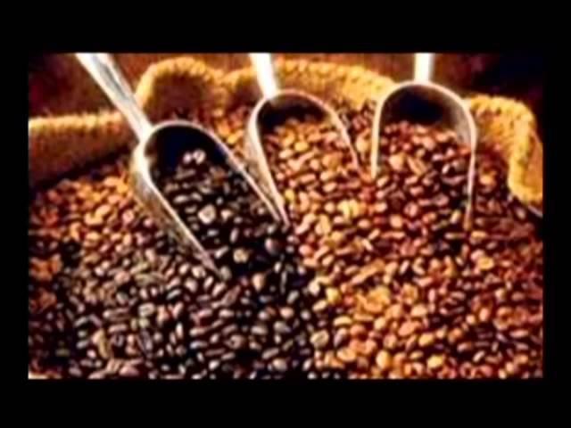 Как казак Европу кофе напоил В поисках истины
