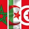 Maghreb Sport