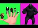 Finger Family Rhyme - KING KONG V/S LION,COW,BEAR,DOG,RABBIT Version   Funny Children Poems In 3D