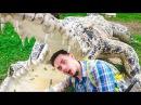 YANG BAY Охота на крокодилов и поросячьи бега. Нячанг. Вьетнам. Часть 1