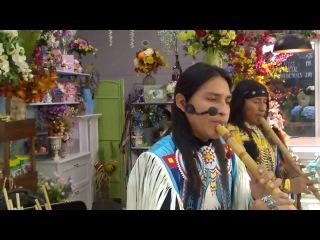 Oчень красивая мелодия.Ecuador Spirit. Beyond The Trail of Tears. 20160920 1838