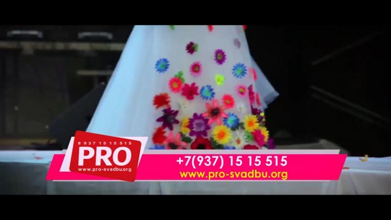 Главное свадебное событие года! PRO Свадьбу-2017! VIII церемония награждения премии PROфессионал свадебной и праздничной индуст