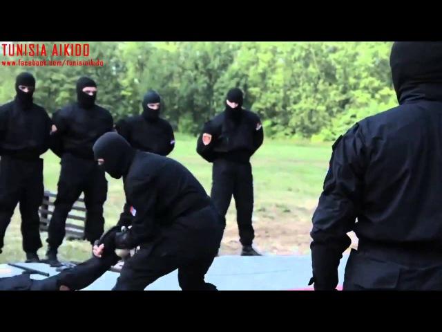 БОЕВОЕ АЙКИДО РУКОПАШНЫЙ БОЙ демонстрирует спецназ Сербской полиции