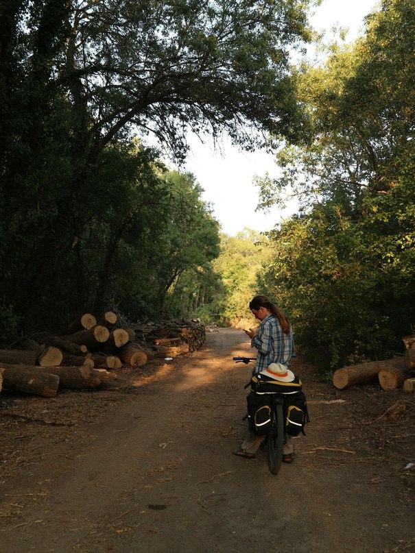 По Болгарии на велосипеде. Часть 3 (Live) Фото 37