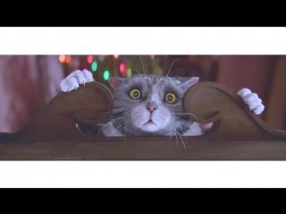 Про кота (рождественский мультик)