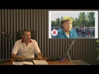 Veröffentlichung - Jörg Meuthen - AFD - - Die - Fake - News - Kanzlerin -