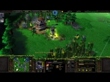 Warcraft 3 TFT - So who is Demon Hunter