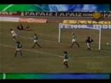 Santos 1 x 1 Palmeiras 1977(480P).mp4