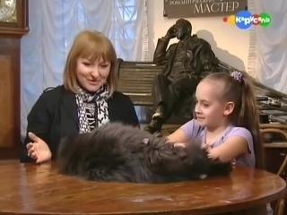 Кот Бегемот из музея Булгакова