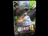 Самые странные в мире. Запреты мира животных. Секс по дружбе / 2013 / Full HD