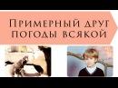 Примерный друг погоды всякой (Константин Ваншенкин) / на конкурс Главный Читатель Книжного шкапа