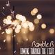 Bamble B - Coming Through the Light
