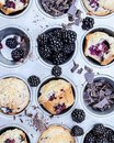 Magic Muffin фотография #10