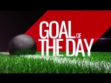 Goal of the Day ?Ron