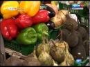 Иркутскстат как изменилась в марте стоимость продуктов в Иркутской области