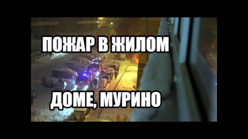 Пожар в жилом доме Мурино | Девяткино на Петровском бульваре 7 12.02.2018