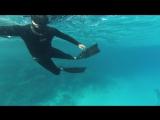 Freediving: Dahab. El Garden. Medvedev M.