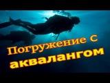 Погружение с аквалангом в черном море