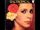 Gal Costa - Tropical full album
